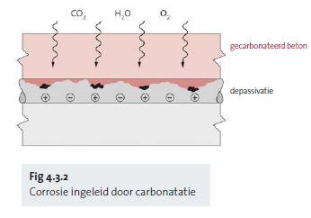 Fig 4.3.2 Corrosion induite par carbonatation - nl
