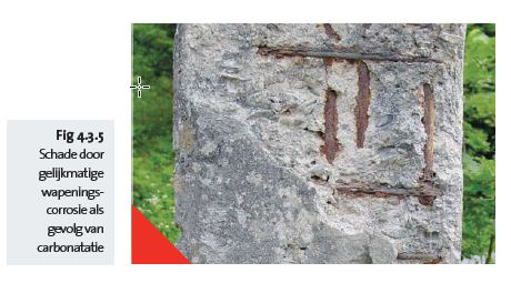 Fig 4.3.5 Dégâts de corrosion d'une armature - nl