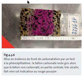 Fig 4.3.6 Mise en évidence du front de carbonatation par un test à la phénolphtaléine - fr
