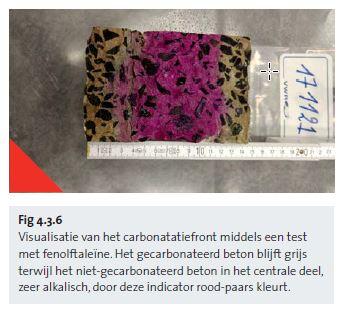 Fig 4.3.6 Mise en évidence du front de carbonatation par un test à la phénolphtaléine - nl