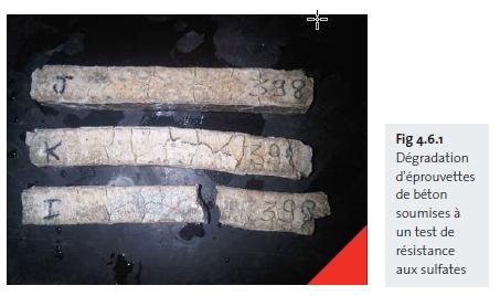 Dégradation d'éprouvettes de béton soumises à un test de résistance aux sulfates
